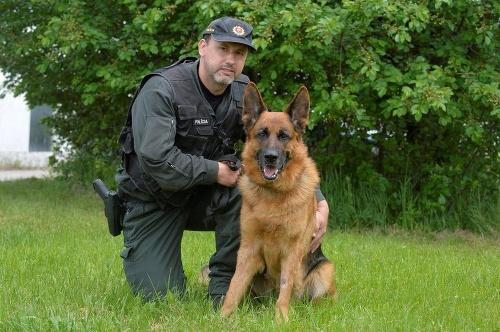 Policajný pes vyňuchal zlodeja.