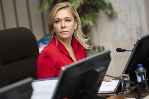 Denisa Saková na rokovaní