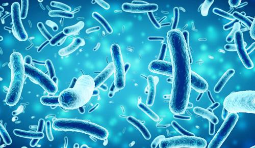 Hrozba smrtiacej pandémie: Ľudstvo