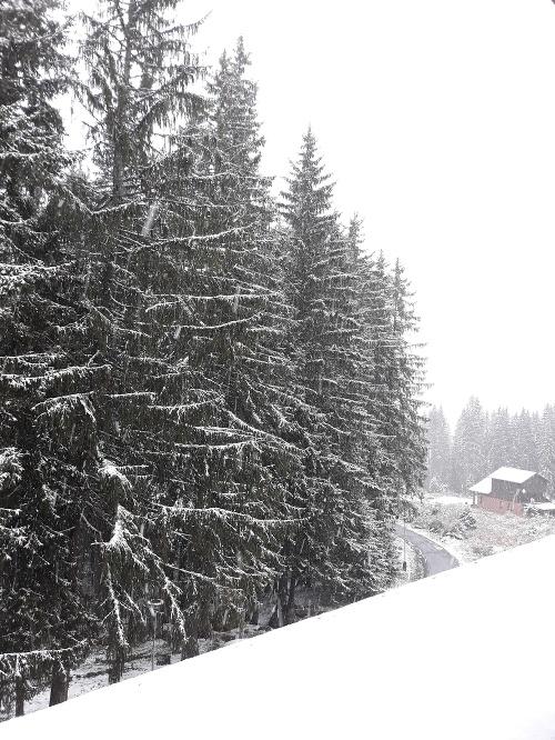 Sneh v Jasnej
