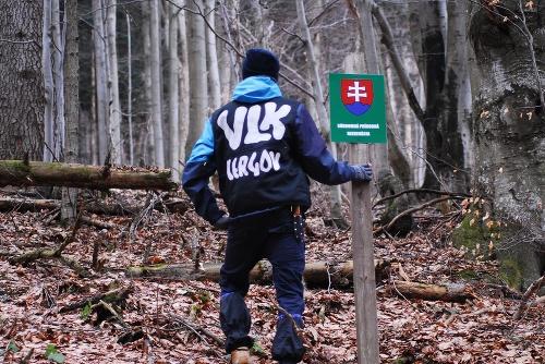 Lesoochranárske zoskupenie VLK