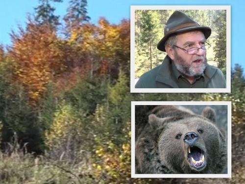Medveď zaútočil na poľovníka