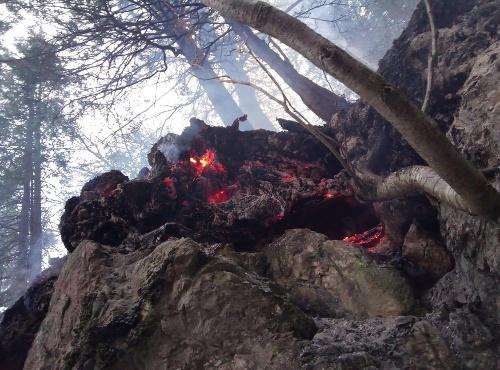 Požiar lesa v Gaderskej