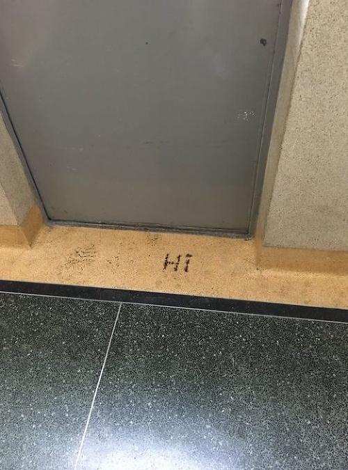 Študentky našli na schodoch