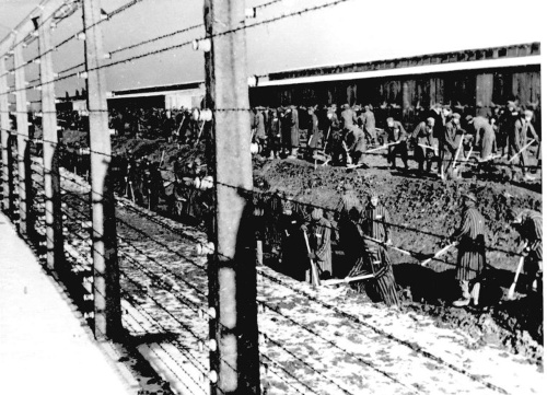 väzni v koncentračnom tábore