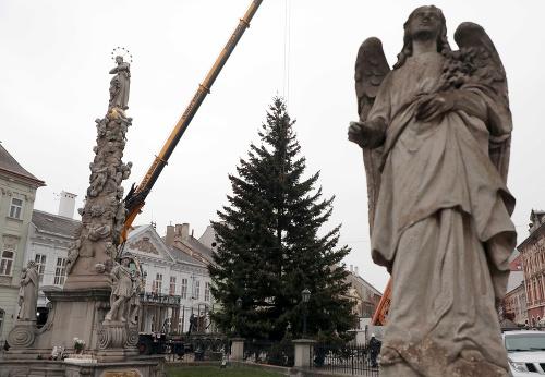 Košický vianočný stromček