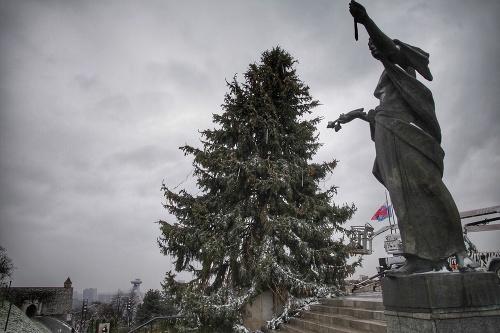 Vianočný stromček pred parlamentom