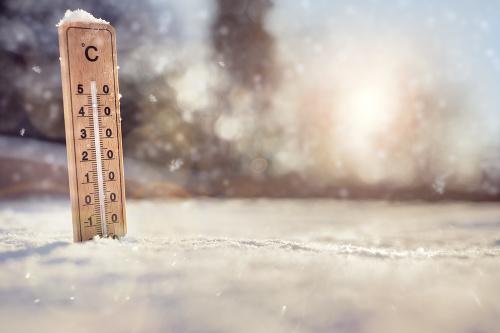 Následky snehovej kalamity na