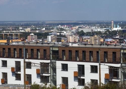 Južný svah bratislavskej Koliby