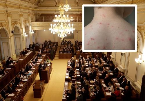 V českom parlamente vypukli
