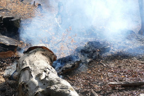 Hasiči likvidovali požiar na
