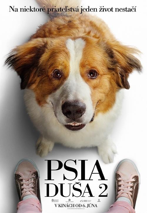Milovníci psíkov, pozor: Pokračovanie