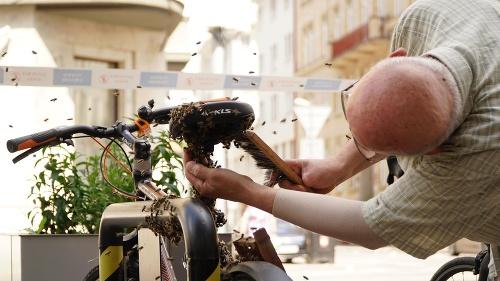 Pre včely z bicykla