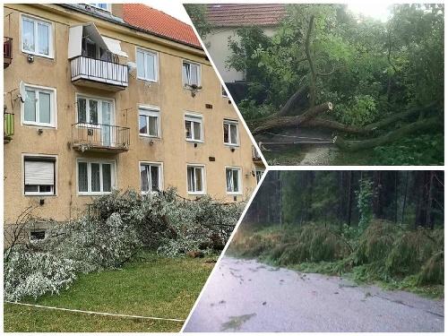 Popadané stromy museli riešiť