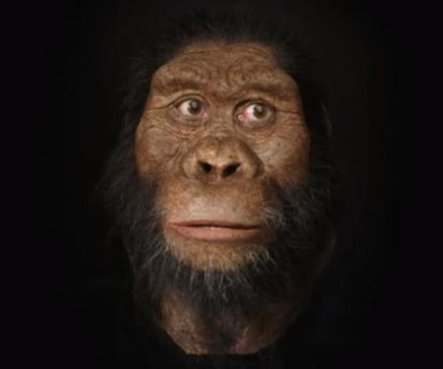 VIDEO Vedci odhalili tvár
