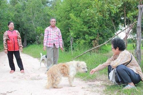 Dojímavý príbeh: Pes čakal