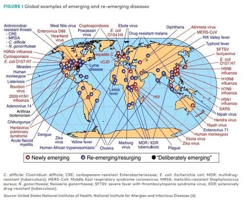 Varovanie pred katastrofou: Pandémia