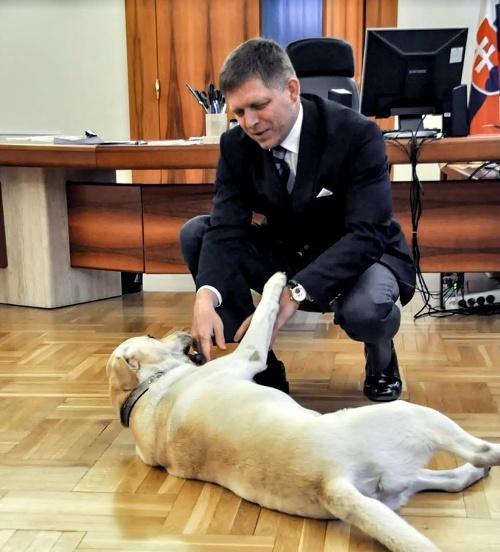 Šéf Smeru Robert Fico