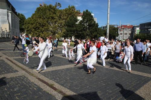 Národný pochod za život: