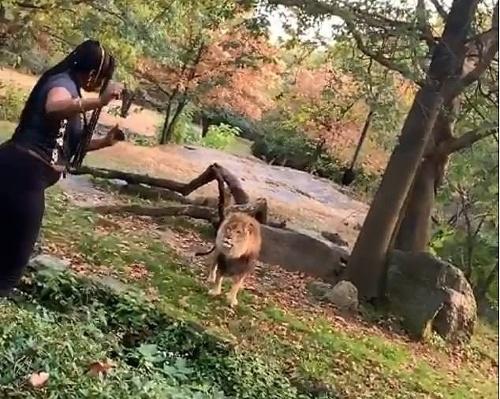 Žena šokovala návštevníkov zoo: