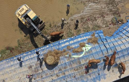 Južnú Kóreu sužujú záplavy