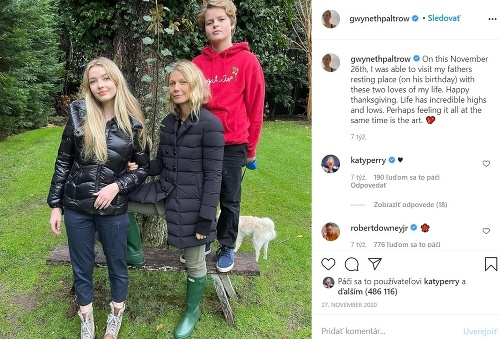 Gwyneth Paltrow so svojími