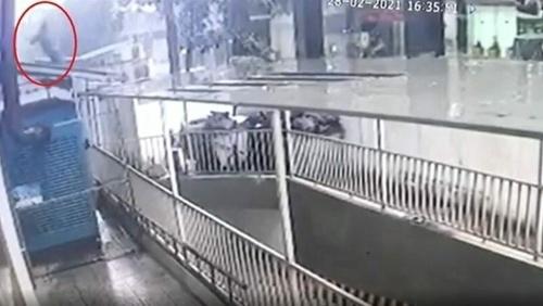 Nguyen Ngoc Manh chytil
