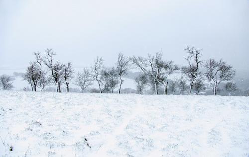 Sneženie v obci Chvojnica