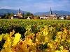 Nemecká vínna cesta