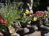 Kittenberské záhrady , Rakúsko