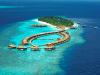 Prezrite si sedem koralových