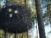 Tree hotel, Švédsko