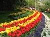 Záhrady Keukenhof, Holandsko
