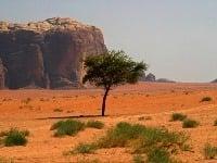 Púšť Wadi Rum, Jordánsko
