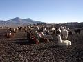 najvyššia hora Bolívie