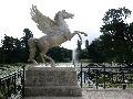 Socha Pegasusa, Dublin
