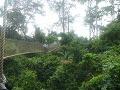 Národný park Kakum, Ghana