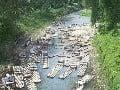 Grande River, Jamajka
