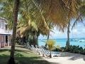 Palmy, slnko, tyrkysová voda