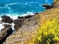 Taliansko - pobrežie Cinque