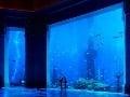 Vodný svet dubajského Atlantisu