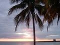 Záliv svíň, Kuba