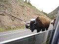 Wyomingu, USA