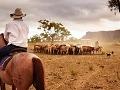 Dlhá tradícia chovu dobytka,