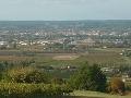 Vinice v okolí Bergerac,