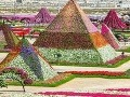 Botanická záhrada Dubai Miracle