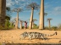 Fotosúťaž National Geographic Traveler 2013