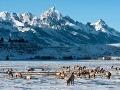 Jackson Hole, Wyoming, USA