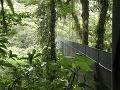 Prírodná rezervácia Oblačný les