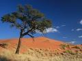 Prírodná rezervácia Namib Rand,